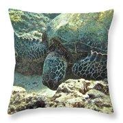 Feeding Sea Turtle Throw Pillow