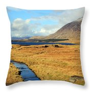 Feeding The Lake Throw Pillow