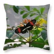 Feeding Time - Butterfly Throw Pillow