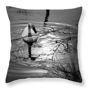 Feeding Trumpeter Swan In Black And White Throw Pillow