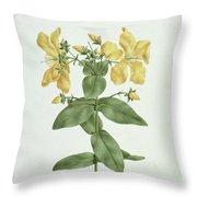 Feel-fetch - Hypericum Quartinianum Throw Pillow