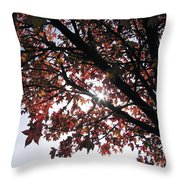 Feeling Throw Pillow