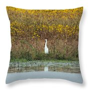 Feeling Small In A Big World Throw Pillow