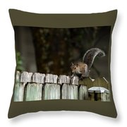 Feeling Squirrelly Throw Pillow