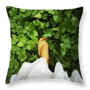 Feet Around The World #3 Throw Pillow