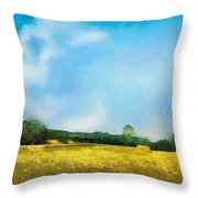 Felder  Throw Pillow