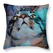 Feline Focus Throw Pillow