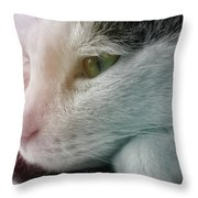 Feline Zen Throw Pillow