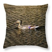 Female Beauty Throw Pillow