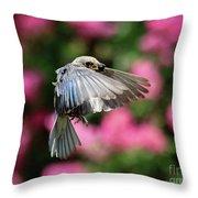 Female Bluebird In Flight Throw Pillow