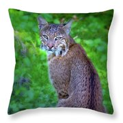 Female Bobcat Throw Pillow