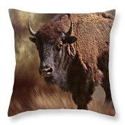 Female Buffalo Throw Pillow