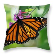 Female Butterfly Throw Pillow