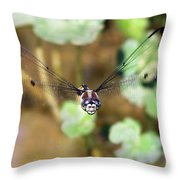 Female Dragonfly Throw Pillow