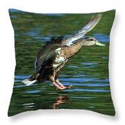 Female Duck Landing Throw Pillow