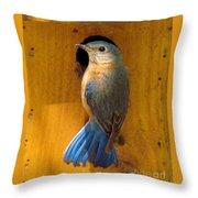 Female Eastern Bluebird 7 Throw Pillow