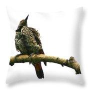 Female Flicker Throw Pillow