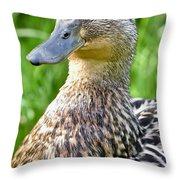 Female Mallard Duck Close Up Throw Pillow