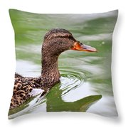 Female Mallard Headshot And Reflection Throw Pillow