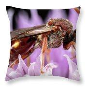 Female Nomada Throw Pillow