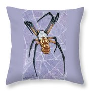 Female Orb Spider Throw Pillow