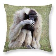 Female Pileated Gibbon, Gladys Porter Zoo Throw Pillow