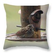 Female Sparrow On Birdfeeder Throw Pillow