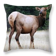 Feme Elk Throw Pillow