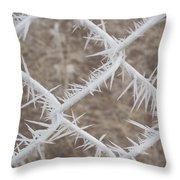 Fence 1 Throw Pillow