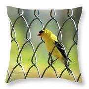 Fence And Feathers Throw Pillow