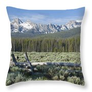 Fence And The Sawtooths Throw Pillow