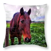 Fence Chat Throw Pillow