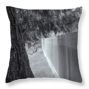 Fence In Black And White Throw Pillow by Tom Singleton