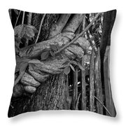 Fence In The Tropics Throw Pillow