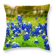 Fence Me In With Flowers Throw Pillow
