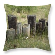Fence Post All In A Row Throw Pillow