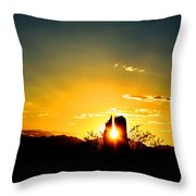 Fence Post Sunset Throw Pillow