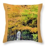 Fenced In Color Throw Pillow