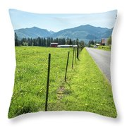 Fenced In Dandelions Throw Pillow