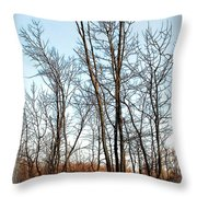 Fenced In Landscape Throw Pillow