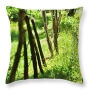 Fenceline Throw Pillow