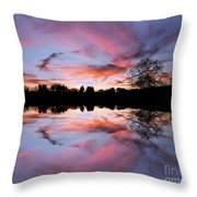 Fencing Reflections Throw Pillow