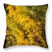 Fens In Fall Color Throw Pillow