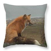 Ferdinand Fox  Throw Pillow