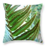 Fern Art Print Green Forest Ferns Baslee Troutman Throw Pillow