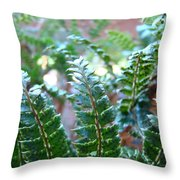 Fern Art Prints Green Sunlit Forest Ferns Giclee Baslee Troutman Throw Pillow