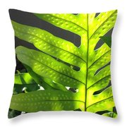 Fern Delight Throw Pillow