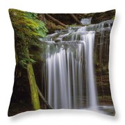 Fern Falls Throw Pillow