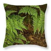 Fern Garden Throw Pillow