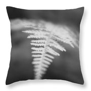 Fern I Throw Pillow